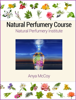 natural perfumery institute textbook cover